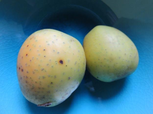 ananasrenette