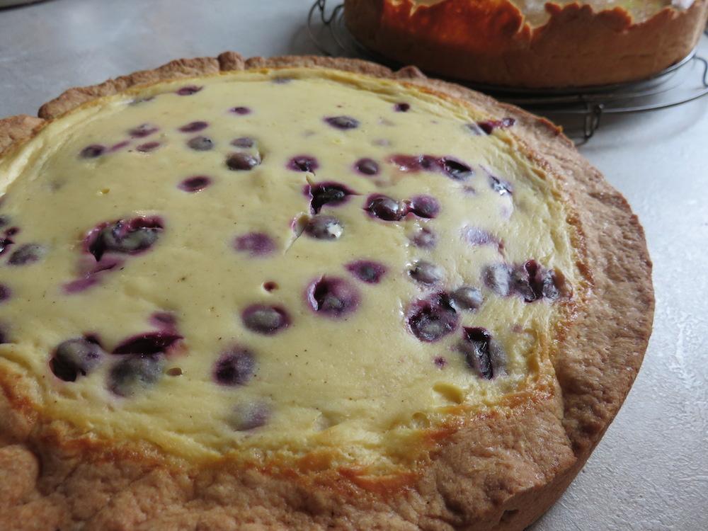 Blaubeer Quark Kuchen Landidylle
