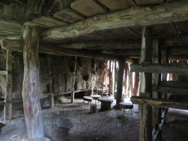 steinzeithaus2