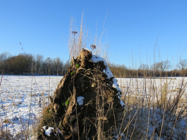 winter-steinzeit4