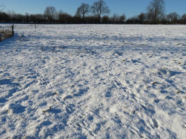 winter-steinzeit6