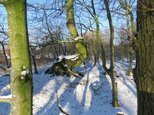 winter-steinzeit7