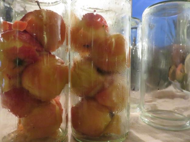 aepfel-in-pikantem-apfelsirup2