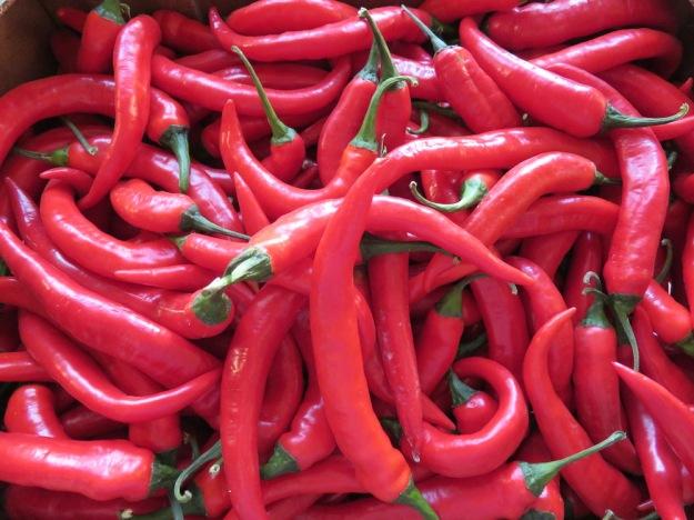 pimientos-picantes-rojo-fino