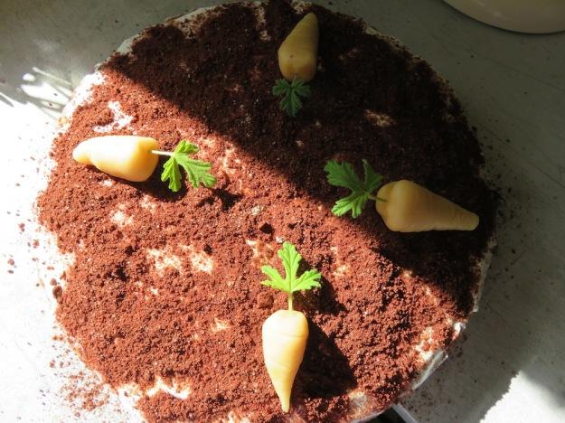 Rübli-Kuchen mit Pastinake