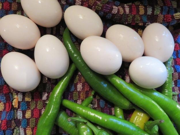 weisse-eier