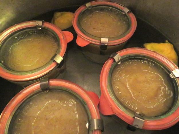 kalkfrei-einkochen