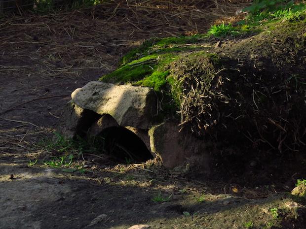 hobbithoehle-fuer-kaninchen