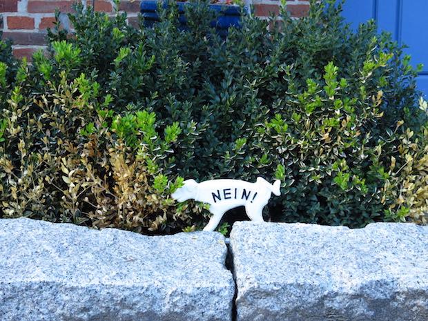 Jemand lässt zu, dass sein Rüde meine Buchsbaumhecke an der Strasse totpinkelt, ob Schilder helfen?