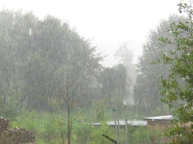 Und das war der Garten heute: Starkregen und Sturm. Wie gut, dass wir die warmen Wochen hatten. Wie gut!