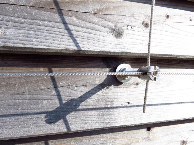 Detail Seilsystem vom Spalier