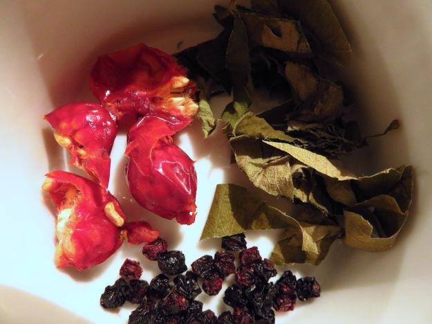Hagebutten, Holunderbeeren und Erdbeerblätter
