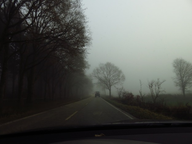 Kurz nach Mittag im November in Norddeutschland