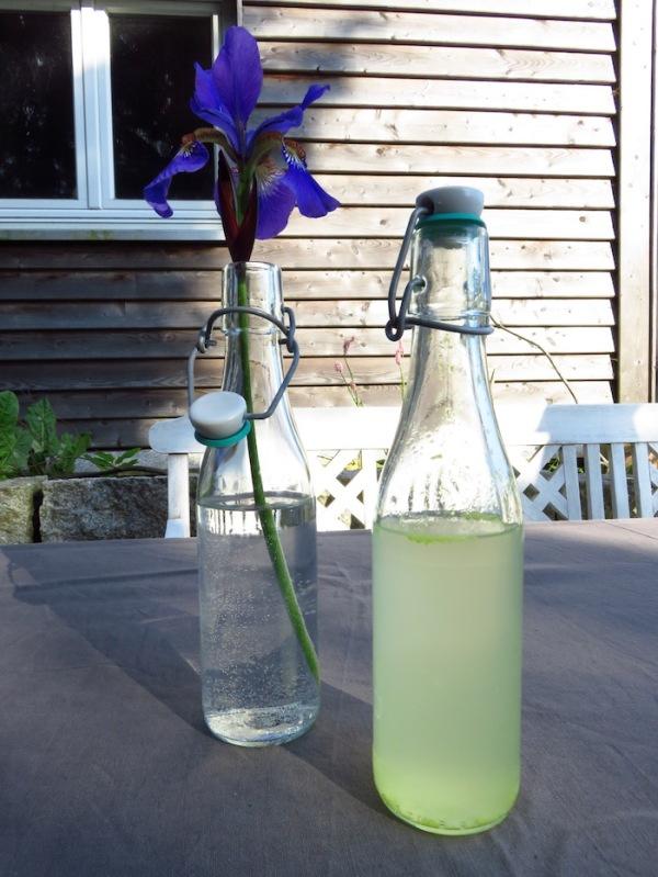 Fermentierter Holunderblütensekt 9 Monate in der Flasche gereift