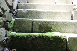 Viele Stufen in die kühle Grotte