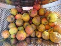Lageräpfel in der Waschmaschinentrommel Ende März