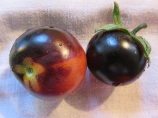 Echte schwarze Tomaten