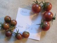 Vergleich schwarzer Tomaten