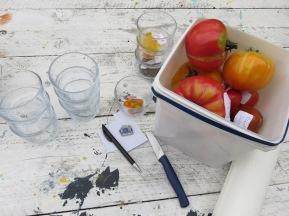 Tomaten ernten, beschriften, aufschneiden, verkosten, Samen ernten.