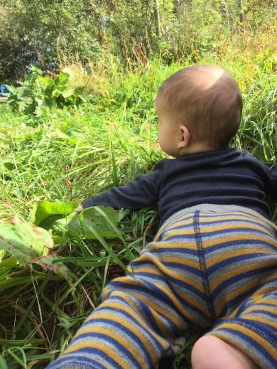 Leichteres Ernten mit Baby auf der Wiese