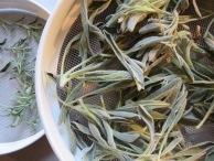 Griechischer Bergtee und Stevia
