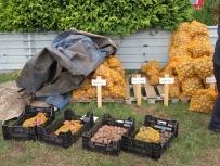 Kartoffeln zu verkaufen