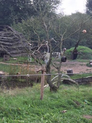 Steinzeitlicher Fetischbaum