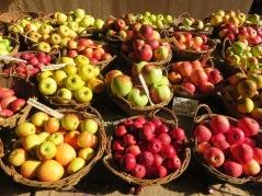 Einige Apfelsorten