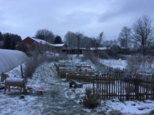 Hochbeete im Schnee