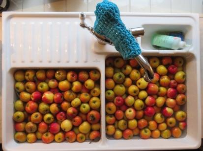 Apfellager durchgesehen ...