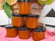 Sandorn-Aprikosen-Sauce