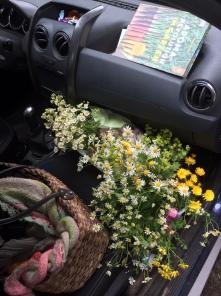 Blumenpracht zum Schmücken des Kindergartens