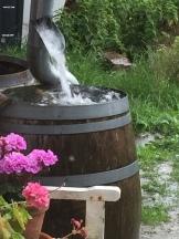 Wasser-Ernte
