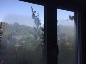 Herbstlich beschlagene Fenster