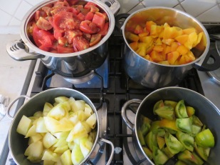 Tomatensauce in 4 Farben