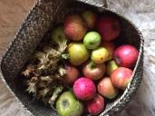 Nüsse und Äpfel